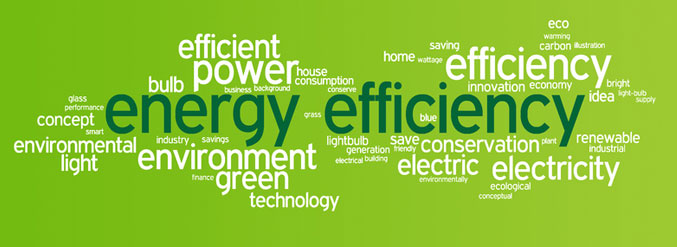 How to make your business energy efficient environment blog for Energy efficiency facts