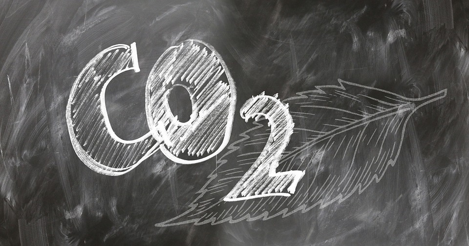 Pros And Cons Of Offsetting Your Carbon Footprint Environment Blog